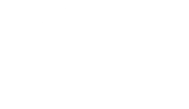 visa-5-logo-black-and-white